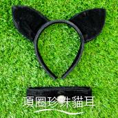 項圈珍珠貓耳[T12]