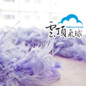 淺紫--  羽毛條(7呎)/條 [T3]