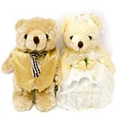 8吋 新人熊/單隻[T4]